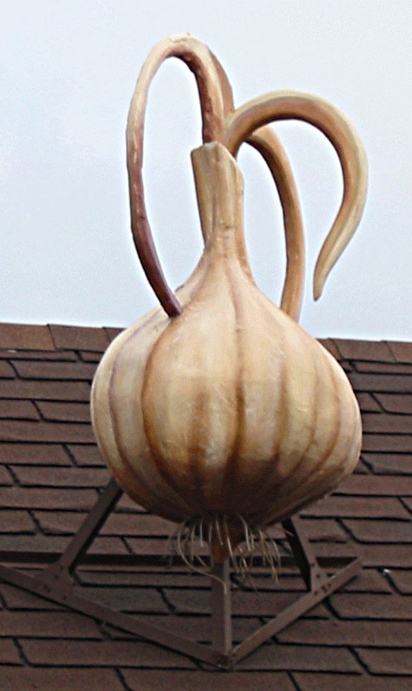 Giant Garlic  Grovers Mill NJ